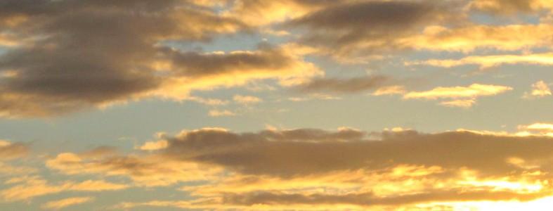 mandy collins australia