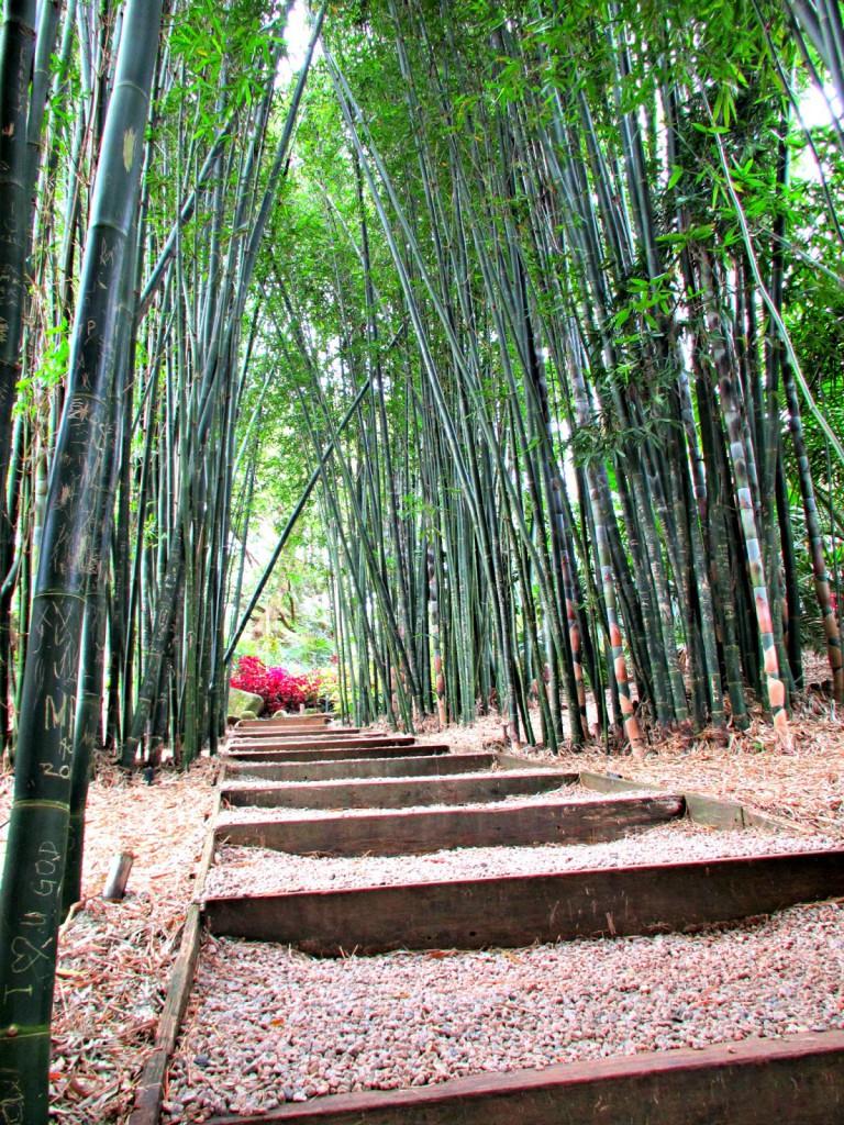 mandy collins mixed media tutorials crystal castle bamboo walk